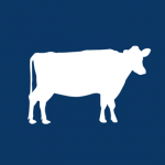 カウ株式会社